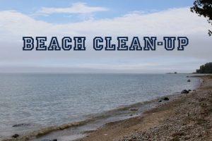 Beach Clean-up @ Your Favorite BI Beach