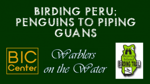 WoW 2017: Birding Peru; Penguins to Piping Guans @ Beaver Island Community Center | Charlevoix | Michigan | United States