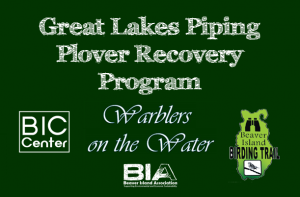 Great Lakes Piping Plover Recovery Program @ Beaver Island Community Center | Beaver Island | Michigan | United States