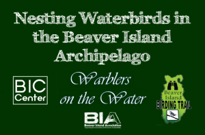 Nesting Waterbirds in the Beaver Island Archipelago @ Beaver Island Community Center | Beaver Island | Michigan | United States