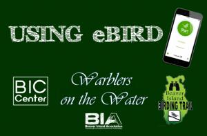 Using eBird @ Beaver Island Community Center | Beaver Island | Michigan | United States