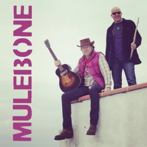 Mulebone @ Beaver Island Community Center
